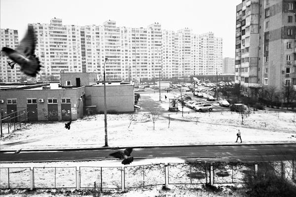 PHOTOLOGIX_duif