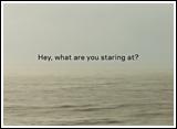 NH-poster_staring