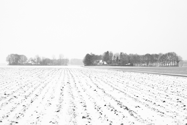 Winter wonderland, februari 2013