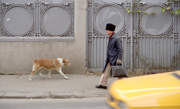 Bucharest, 2005