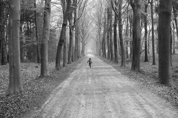 Lasse rent het bos in, Lotenhulle (BE) - april 2015